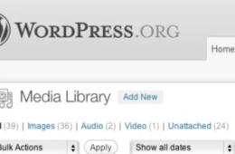 WordPress: What is WordPress?