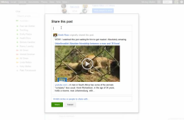 Google+: Sharing posts